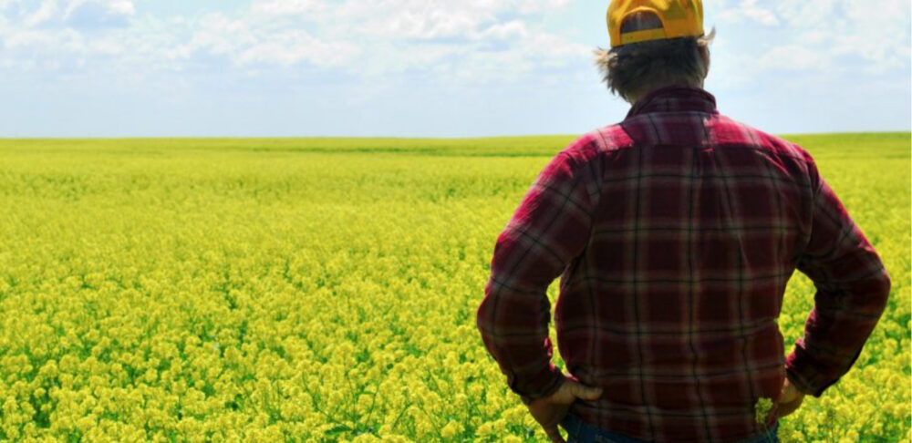 agricultor contemplando el campo.